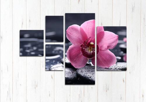 Модульная картина Розовое чудо