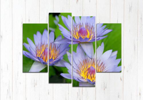 Модульная картина Красота цветочная