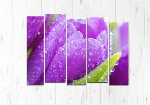 Модульная картина Фиолетовая лилия