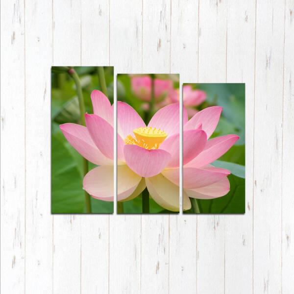 Модульная картина Розовая нежность