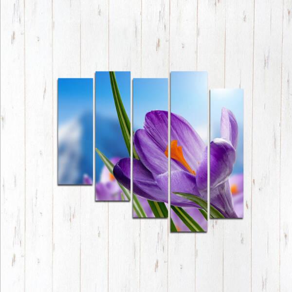 Модульная картина Сияние цветка