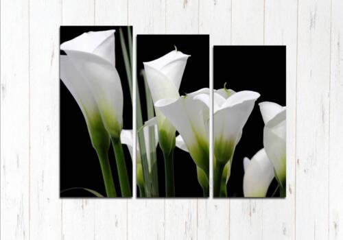 Модульная картина Белые каллы