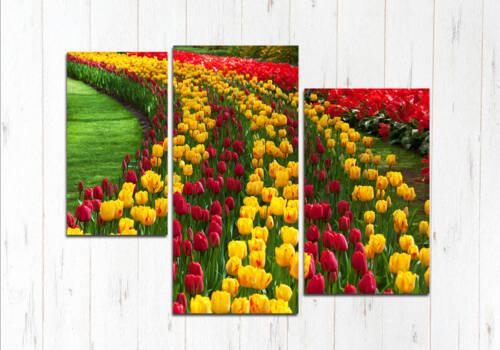 Модульная картина Поле тюльпанов