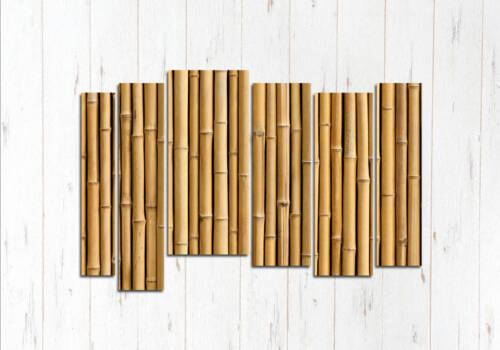 Модульная картина Лес бамбука