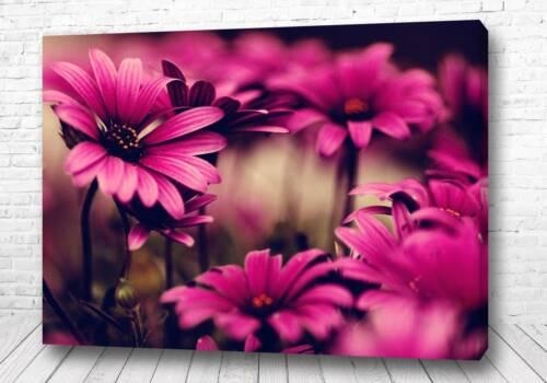 Постер Цветульки