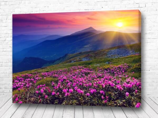 Постер цветы в горах