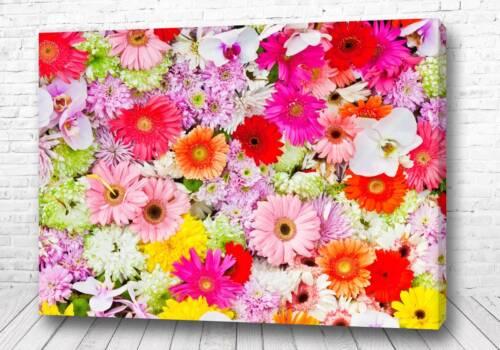 Постер Микс цветов