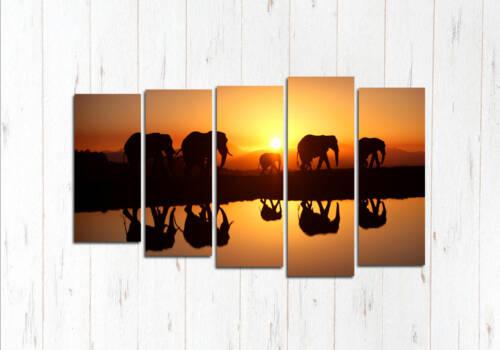 Модульная картина Слоны у воды