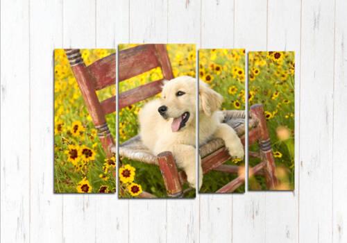Модульная картина Радостная собачка