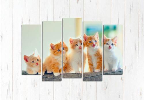 Модульная картина Пять друзей