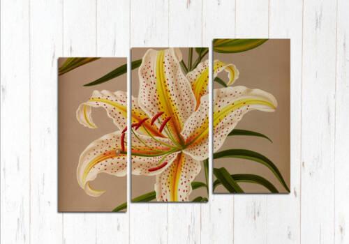 Модульная картина Бежевый цветок