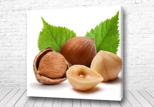 Постер Лесные орешки
