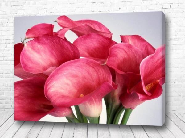Постер Розовая феерия