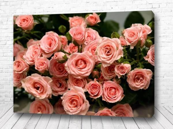 Постер Нежные розовые розочки