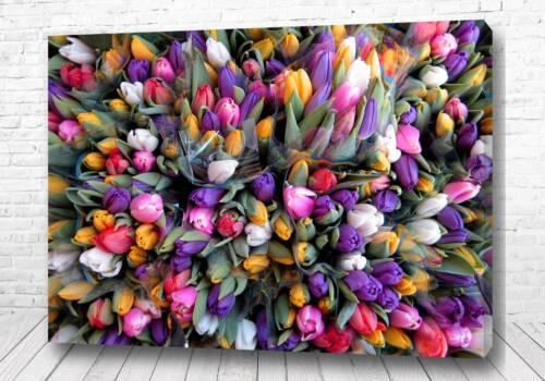 Постер Цветочный взрыв
