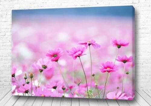 Постер Розовое сияние