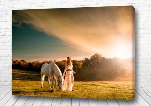 Постер В белом закате