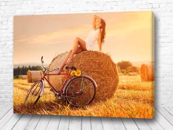 Постер Отдых на стоге сена