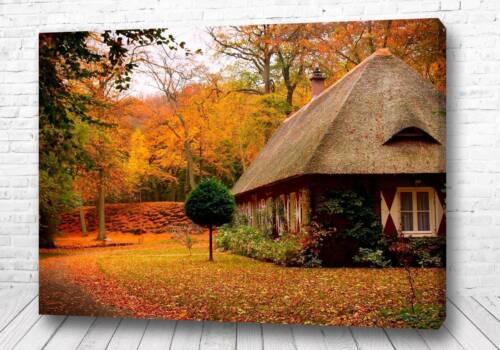 Постер Сельский дом