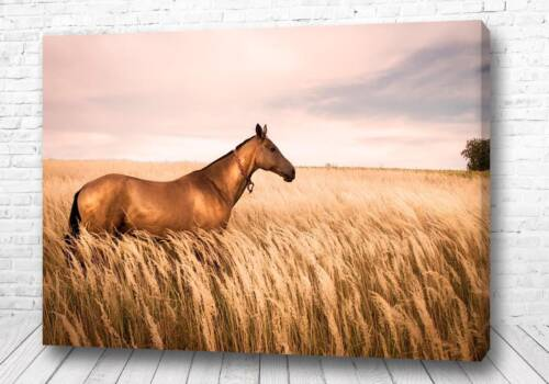 Постер Лошадь в ржи