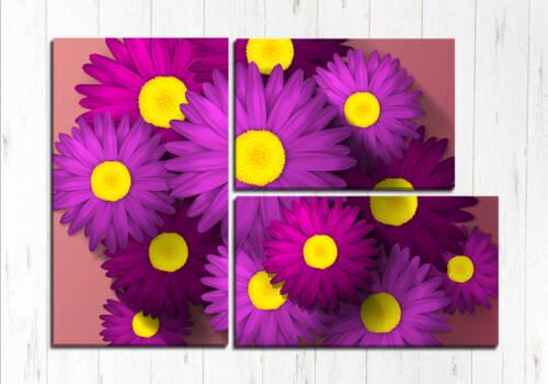 Фиолетовые красоты