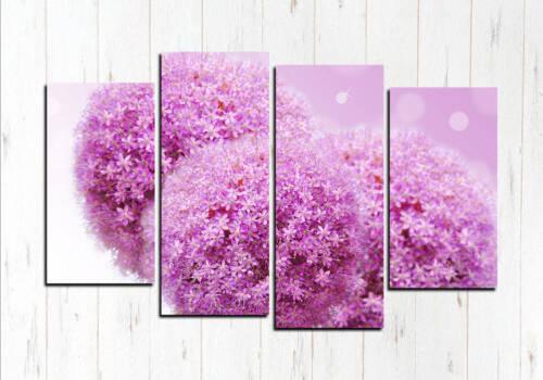 Фиолетовые шарики