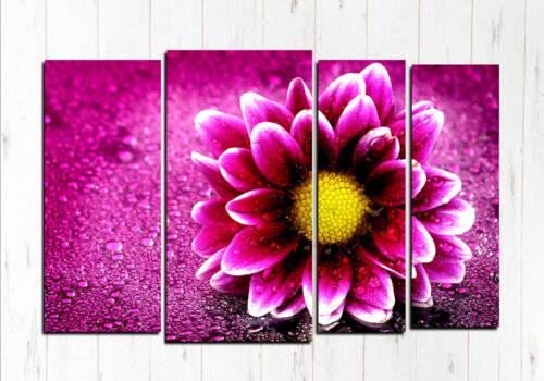 Фиолетовый микс