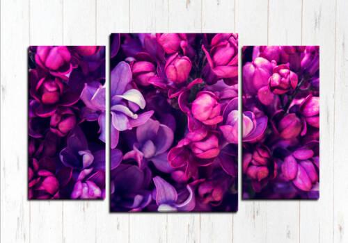 Фиолетовая роща