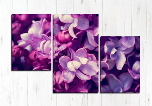 Модульная картина Фиолетовые цветы
