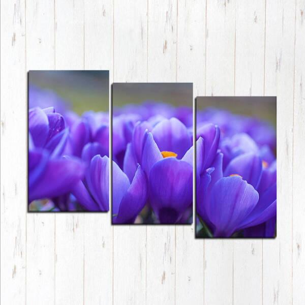 Спокойный фиолетовый