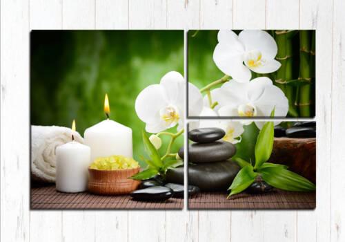 Модульная картина Белая орхидея спа
