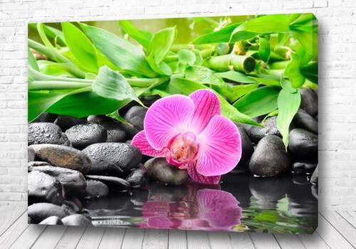 Постер Спокойствие воды