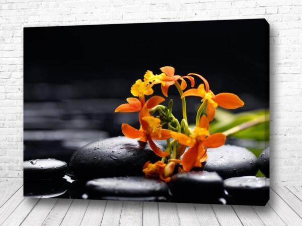 Постер Цветок в камнях