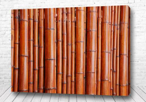 Постер Бамбуковый забор