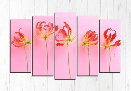 Модульная картина Розовая красота