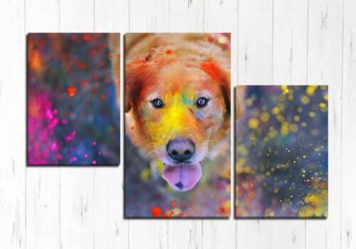 Модульная картина Яркий пёс