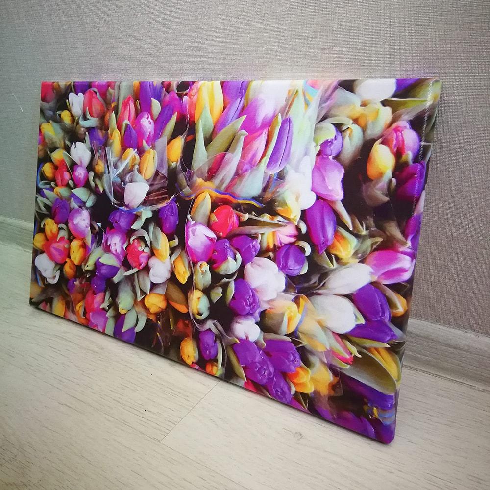 Постер Тюльпаны