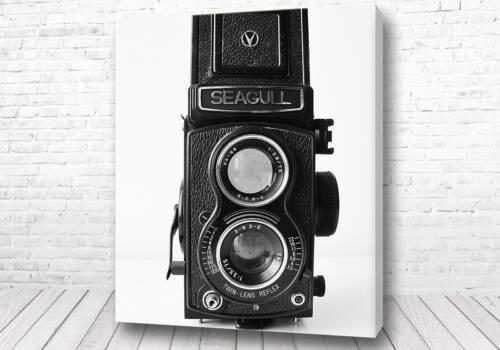 Скандинавские постеры фотоаппарат