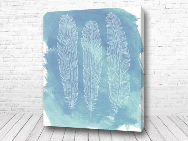 Постер Перья на голубом