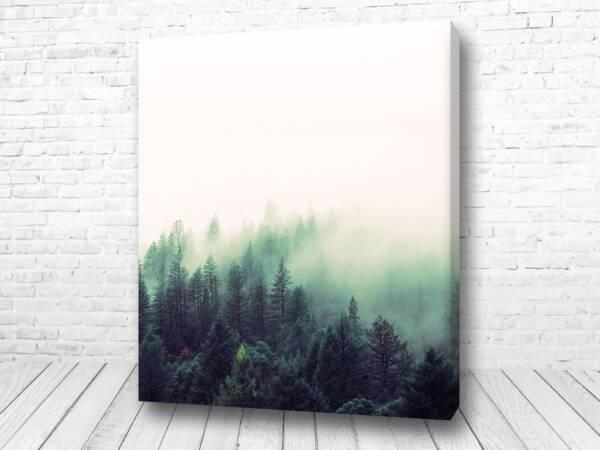 Постер Туман над горами сканди