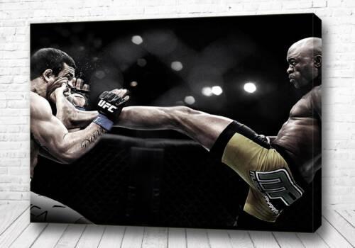 Постер UFC