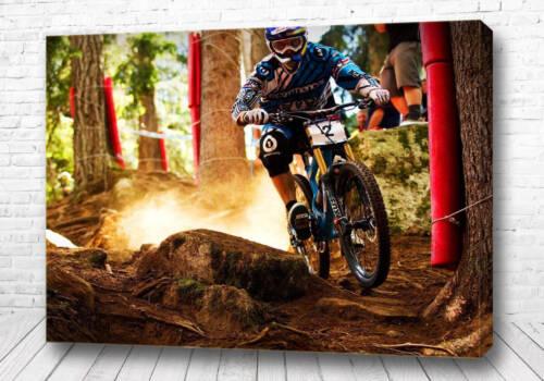 Постер Вело кросс