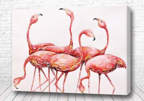 Шесть фламинго