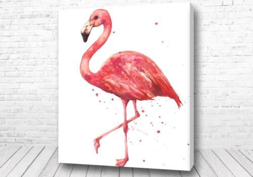 Великолепный фламинго