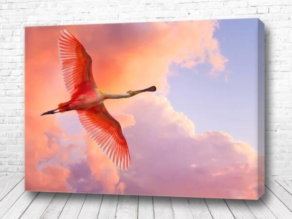 Постер Фламинго в небе
