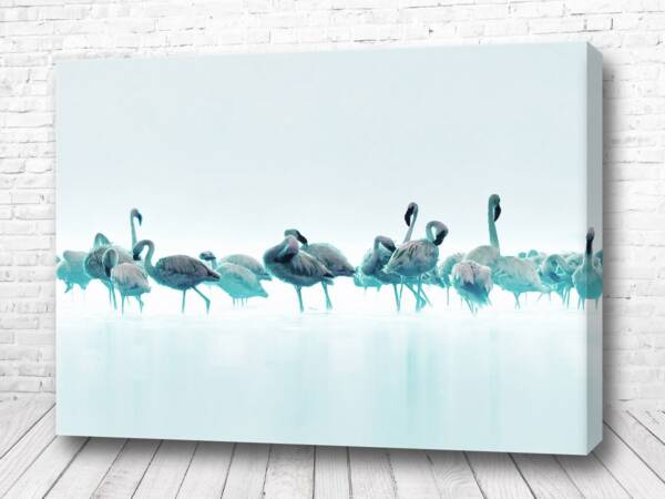 Синие фламинго