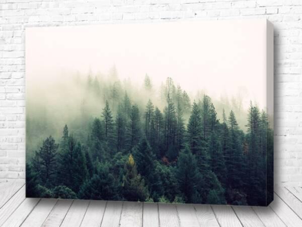 Постер Тихий лес