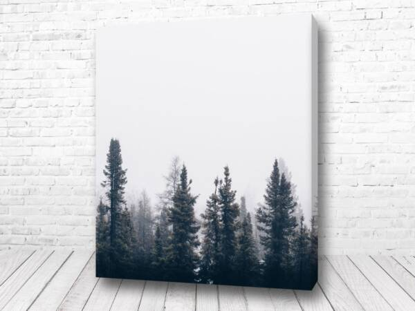 Одинокий лес