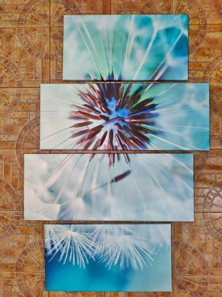 Модульная картина Одуванчик четыре модуля