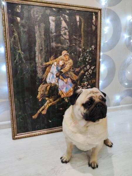 Картина Иван Царевич на сером волке в интерьере
